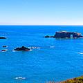 Panoramic California Coast by James O Thompson