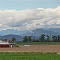 Panoramic Colorado Agriculture Rocky Mountain Landscape by James BO Insogna