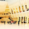 Panoramic Oculus In New York  by Funkpix Photo Hunter