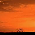 Panoramic Prairie Sunset by Mark Duffy