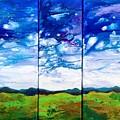 Panoramic Stormy Skies by Ivy Stevens-Gupta