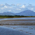 Panoramic View Blennerville by Terence Davis