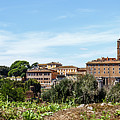 Panoramic View Of Rome by Cara Koch