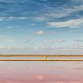 Panoramic View Of Saline Drip - Salin De Giraud by Pier Giorgio Mariani