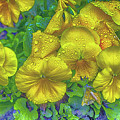 Pansies - Coloring Book Effect by Constantine Gregory