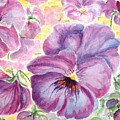 Pansies by Peggy King