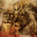 Panthera Leo 2016 by Kathryn Strick