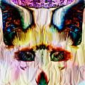Paper Fox  by JD Poplin
