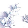 Paper Petals by K M Pawelec