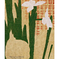 Paper Whites II by Betsy Derrick