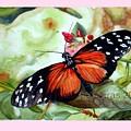 Papillon I by Rose Sciberras