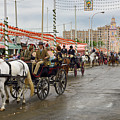 Parade Of Horse Drawn Carriages On Antonio Bienvenida Street Wit by Reimar Gaertner