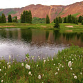 Paradise Basin by Steve Stuller