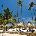 Paradise Beach by Sebastian Musial