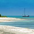 Paradise Found by Debbi Granruth