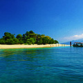 Paradise Island Haiti by Laura D Young
