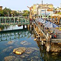 Paradise Pier At California Adventure by De Ann Troen