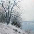 Paradise Point Bridge Winter by Jim Gola