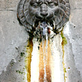 Paris - Waterfountain by Jennifer McDuffie