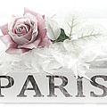 Paris Dreamy Pastel Pink Roses On Paris Book - Romantic Paris Roses And Books Shabby Chic Art by Kathy Fornal