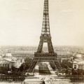 Paris: Eiffel Tower, 1900 by Granger