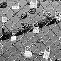 Paris Locks by Carol Groenen