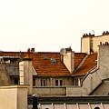 Paris Rooftops by Jani Freimann