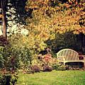 Park Bench, Fall by David Nicholson