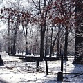 Park In The Snow by Charleen Treasures