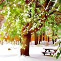 Park In Winter by Jeelan Clark