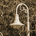 Park Lamp Post In Sepia by Colleen Cornelius