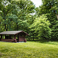 Park Shelter In Lush Forest Landscape by Donald  Erickson