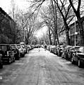 Park Slope Street Light by John Rizzuto