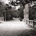Park Walk In Fall by Eric Belford
