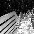 Park Walk by James Hennis