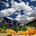 Parker Canyon Fall Colors California's High Sierra by Bill Wight CA