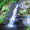 Parker Creek Falls by Ingrid Smith-Johnsen