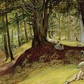 Parkhurst Woods by Richard Redgrave