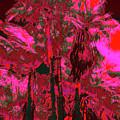 Parking Lot Palms 1 12 by Gary Bartoloni