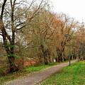 Parkway by Esko Lindell