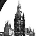 Parliament 2 by Traci Cottingham