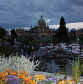 Parliament Building In Victoria At Dusk by Carol Groenen