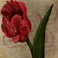Parrot Tulip I by April Moen