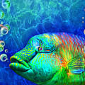 Parrotfish - Rainbow Spirit by Carol Cavalaris