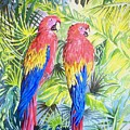 Parrots In Jungle by Frances Evans
