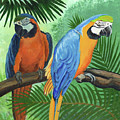 Parrots In Light And Shade by Arlene Kelley