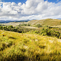 Parting Creek Regional Reserve Tasmania by Jorgo Photography - Wall Art Gallery