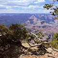 Partly Cloudy - Grand Canyon by Larry Ricker