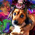 Party Animal by Delight Worthyn