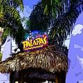 Party At Palapas by Alec Drake